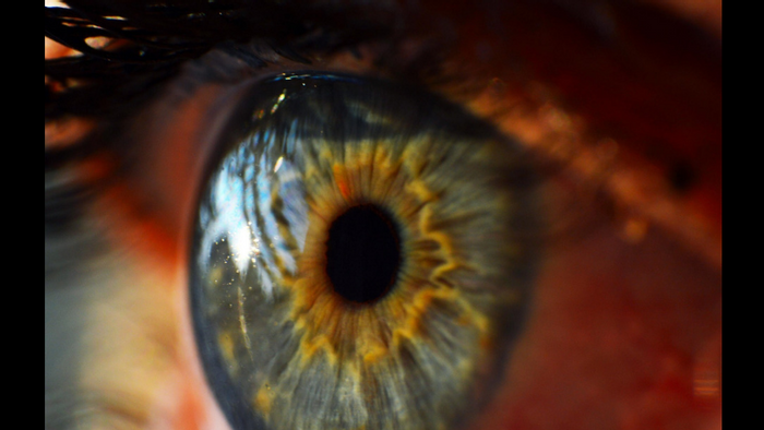 Major Leaps in Sight for Biosynthetic Cornea | Chemistry And Physics