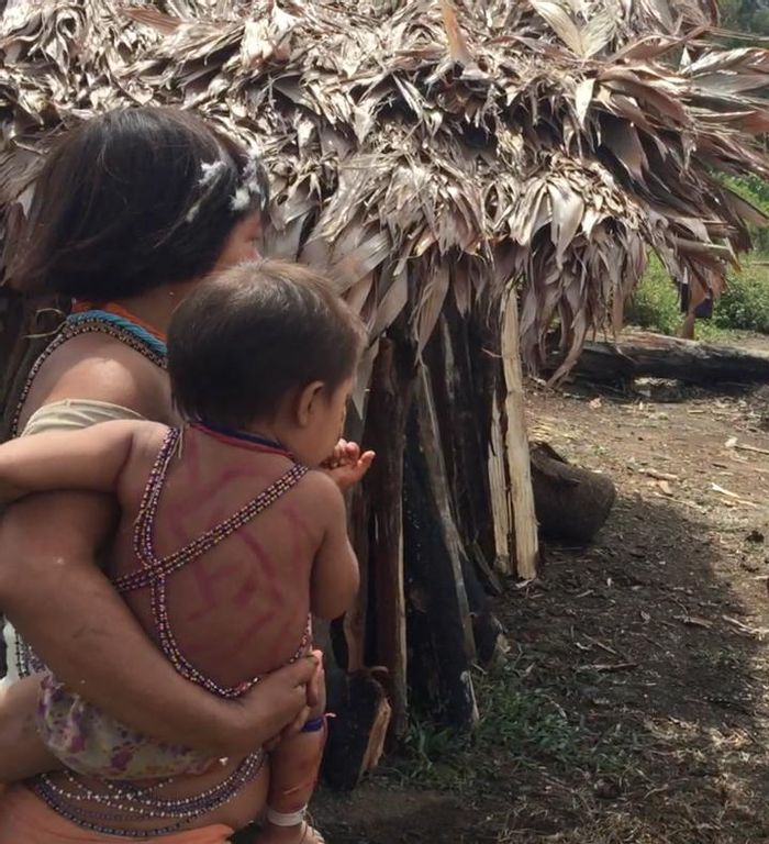 A Rutgers University-New Brunswick study followed a group of urban adults and children during a 16-day visit to this Venezuelan rainforest village, to see how their microbiome -- the good germs living on and in their bodies -- would change. / Credit: Maria Gloria Dominguez-Bello, Rutgers University-New Brunswick