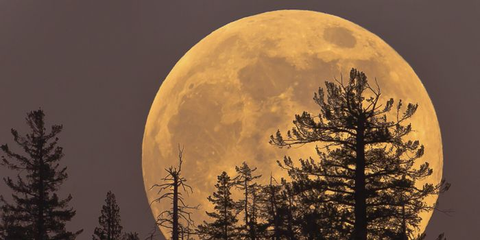 The Super Moon occurs when the Moon gets into its closest orbital position around the Earth.