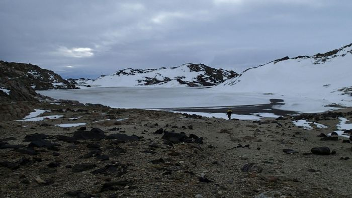 This is Rauer Island lake in Antarctica. Water samples collected from this remote lake are very rare. / Credit: UNSW Sydney