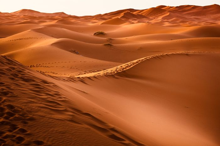 The Sahara covers 3.6 million square miles. Photo:Phys.org