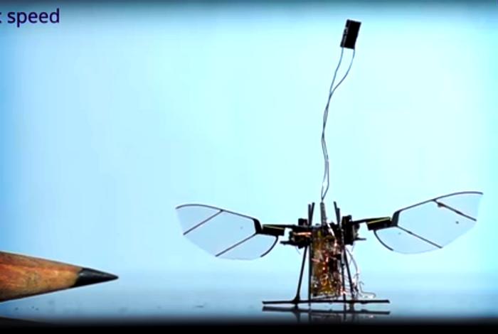 RoboFly, credit: University of Washington