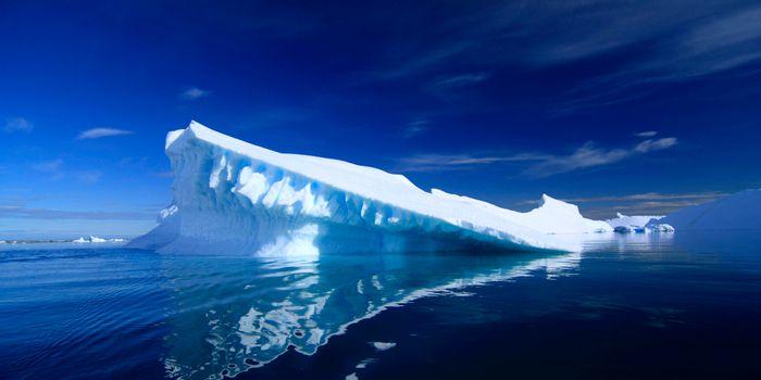 Photo: www.asoc.org