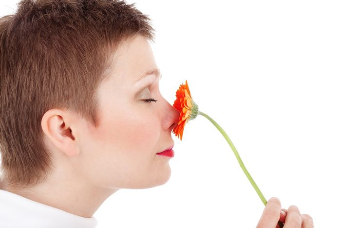 Smell tests may aid in the diagnosis of disorders like Alzheimer's disease. / Image credit: Pixabay