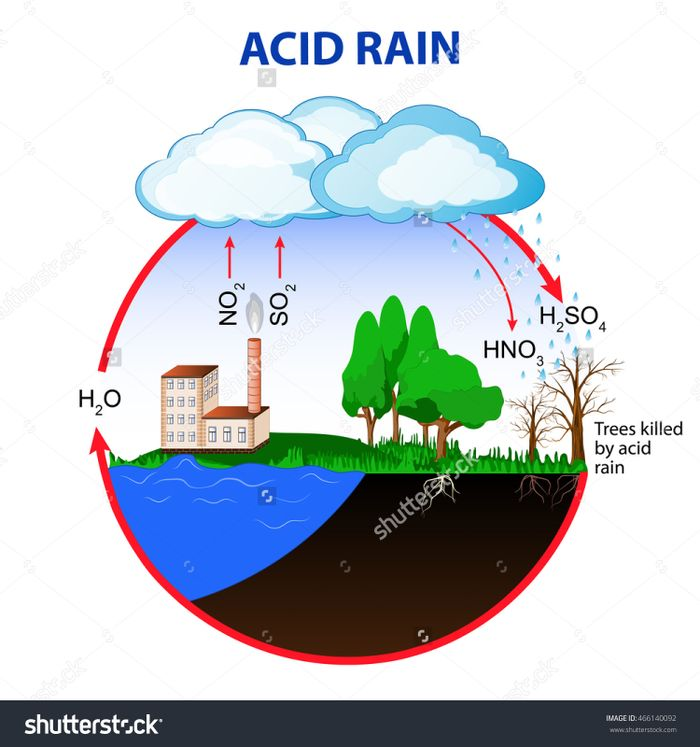 The cycle of acid rain. Photo: Shutterstock