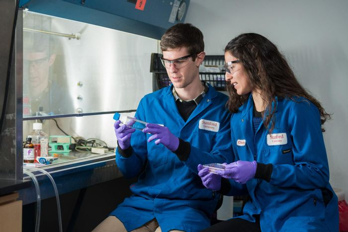 Colin McKinlay and Jessica Vargas are co-lead authors of research that could mark a significant step forward for gene therapy by providing a new way of inserting therapeutic proteins into diseased cells. / Credit: L.A. Cicero