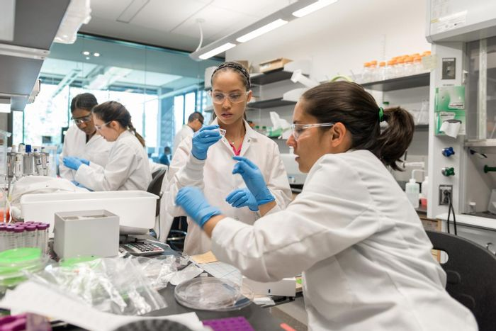 Researchers work in the cell manufacturing laboratory of Krishnendu Roy at Georgia Tech. Shown (l-r) are NSF Graduate Research Fellow Joscelyn Mejias, Research Experience for Undergraduates (REU) Program student Angela Jimenez, (background) Postdoctoral Fellow Randall Toy, Georgia Tech Research Institute TAG-Ed High School Intern Gita Balakirsky, and Project ENGAGES High School Intern Ayanna Prather. / Credit: Rob Felt, Georgia Tech